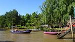 ROMAN Along Arroyo Angostura Tigre Parana Delta 13-12-2015 16-37-59