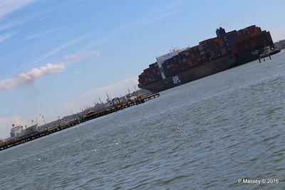 APL CHANGI Passing GREEN GUATEMALA over Royal Pier Southampton PDM 12-04-2016 15-36-18