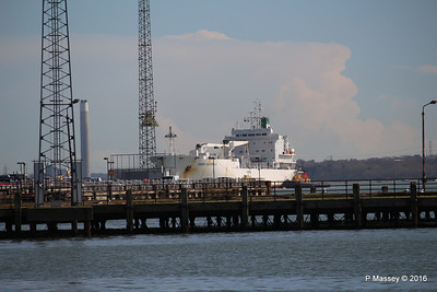 GREEN GUATEMALA holding for APL CHANGI over Royal Pier Town Quay Southampton PDM 12-04-2016 15-33-02